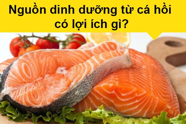 Nguồn dinh dưỡng từ cá hồi có lợi ích gì?, Thành phần dinh dưỡng của cá hồi
